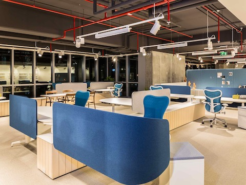An office setting in the Dubai showroom, featuring Locale and Mirra 2 Chairs with blue backs.
