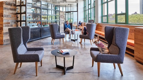 A casual interaction space featuring grey Hush lounge chairs. Select to learn about Herman Miller partner naughtone.