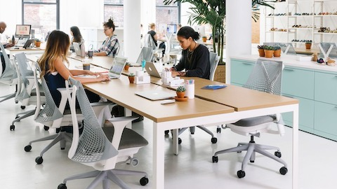 A benching configuration supports office workers seated on grey Sayl Chairs. Select to go to an overview of the Living Office.
