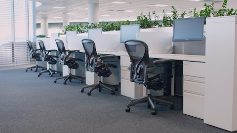 Aeron Chairs at a row of workstations with desk-mounted monitor arms.