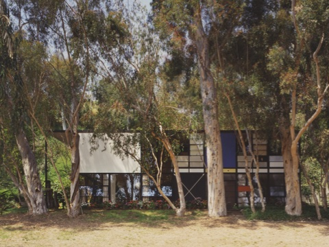 View of the Eames House from the front, showing off white, blue, and red panels. Eucalyptus trees and flowers line the front of the house.