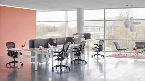 A benching arrangement with black Aeron office chairs and back-to-back Atlas Office Landscape desks separated by grey screens.