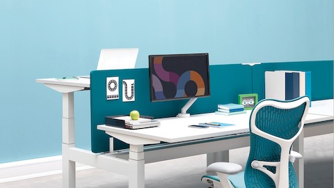 A benching configuration with back-to-back Augment Ratio height-adjustable desks separated by blue privacy screens.
