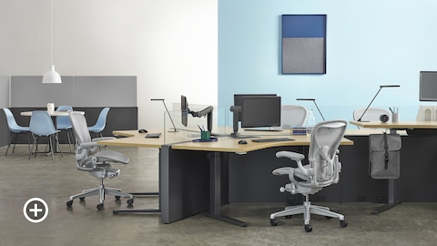 A Canvas Channel workstation with 120-degree configuration, Renew standing desks, and light gray Aeron office chairs with a collaborative space in the background. Select to go to the Shared Workspaces page within the Canvas Lookbook.