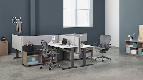 A Canvas Channel workstation with lower storage, Motia height-adjustable tables, grey fabric screens, and dark grey Aeron office chairs.