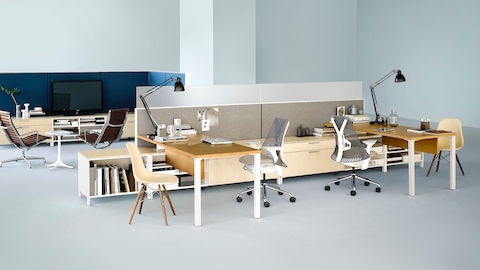 A Canvas Storage workstation in light wood with darker wood surfaces, grey screens, and white Sayl office chairs.