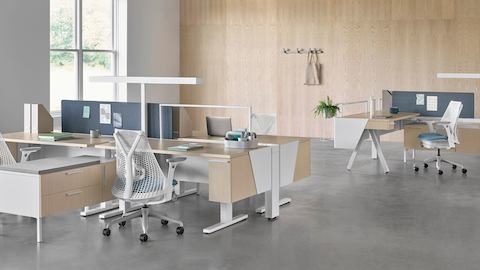 Canvas Vista workstations in light wood and white with blue Sayl office chairs.