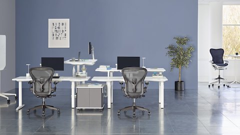 A collaboration area featuring white height-adjustable Atlas Office Landscape desks and black Aeron office chairs. Select to go to our sit-to-stand page.