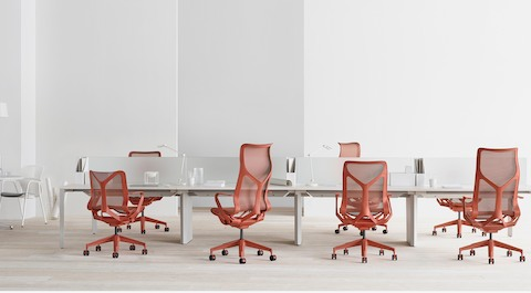 A variety of low-back, mid-back, and high-back Cosm Chairs in Canyon red at a series of bench workstations with personal lighting and privacy screens.