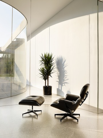 Angled view of a black leather Eames Lounge Chair and Ottoman with a black shell, positioned near a glass wall.