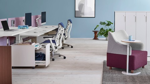 Blue Embody office chairs and white Renew Link height-adjustable work surfaces in a benching work setting.