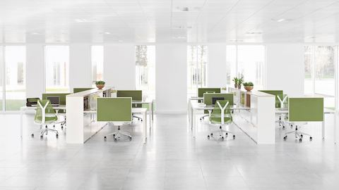 An open office featuring two workstation clusters with Layout Studio surfaces and storage, green screens, and green Sayl Chairs.