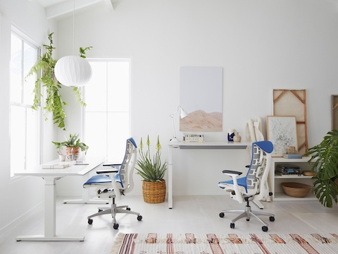 A bright office featuring a hanging Nelson Bubble Pendant lamp, two sit-to-stand desks, and two blue Embody office chairs.