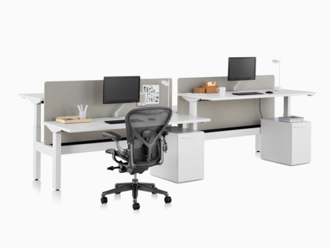 A Nevi Link standing desk system with a black Aeron office chair, privacy screens, monitors, and rectangular work surfaces. Two of the four desks are raised to standing height.