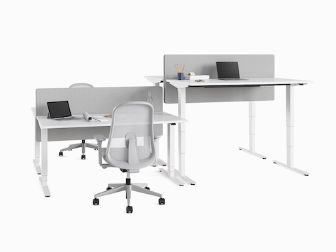 Four Nevi Sit-Stand Desks positioned back to back at seating and standing heights. A pair of Lino Chairs are alongside.