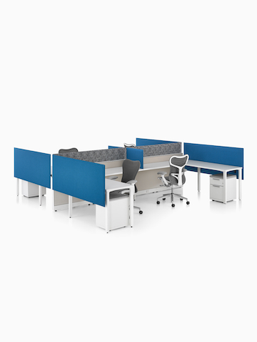 Blue Pari Screens provide seated privacy in a workstation cluster.