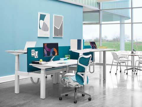 A cluster of four workspaces using back-to-back Ratio height-adjustable desks separated by blue privacy screens.