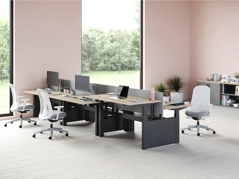 Back-to-back Ratio adjustable desks positioned at standing and seated heights and separated by a blue privacy screen.