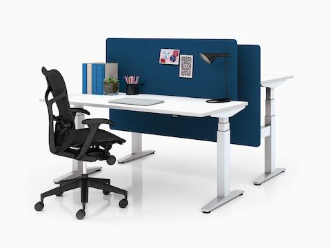 Back-to-back Ratio height-adjustable desks, one at seated height, one at standing height.  Each with a blue privacy screen.
