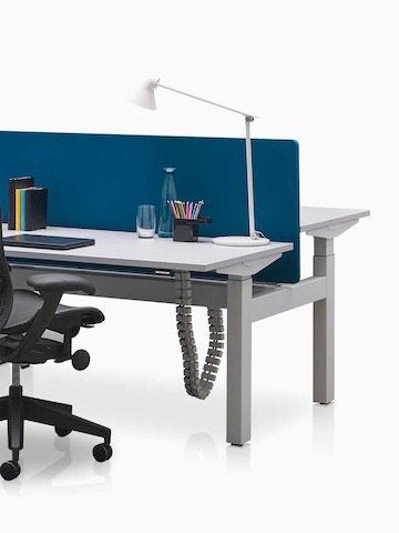 Back-to-back Ratio adjustable desks separated by a blue privacy screen. Select to go to the Ratio product page.