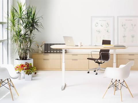 An office featuring an oval Renew Sit-to-Stand Table, black Eames Aluminum Group Chair, and white Eames Molded Plastic Armchair.