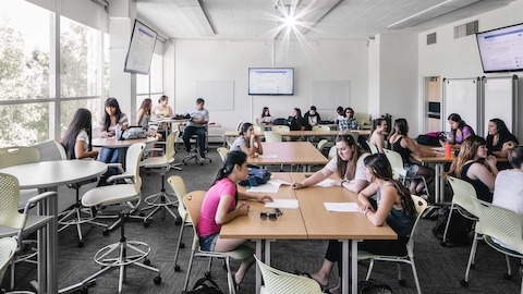 Groups of students sit in Caper chairs while studying in a university building.