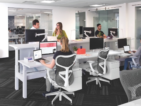 Office employees work and talk among both sitting and standing workstations.
