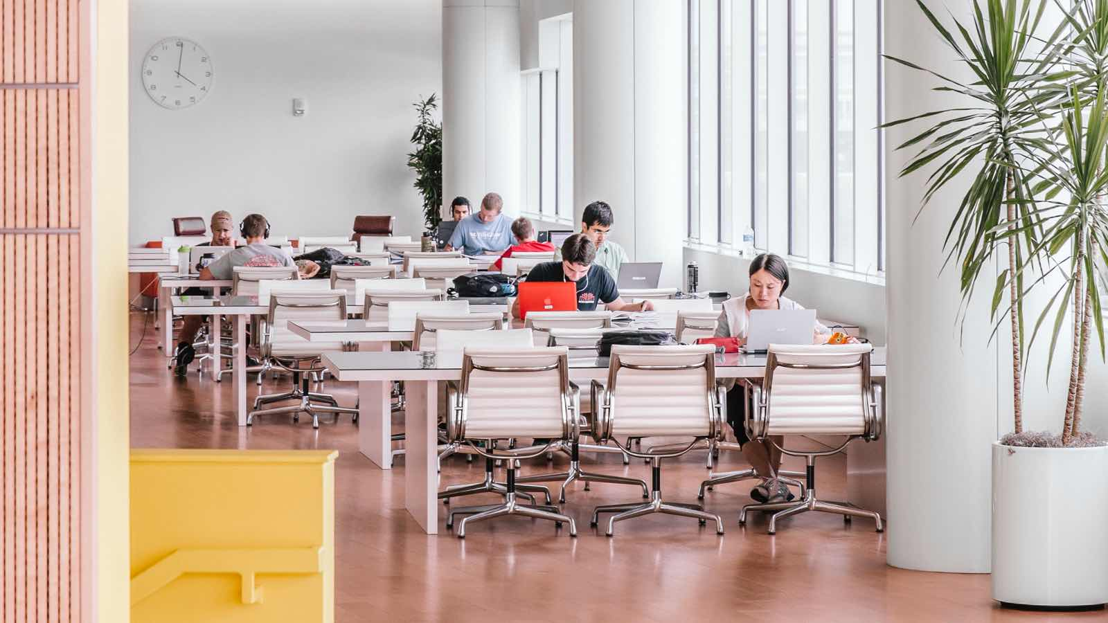 Rows of minimal white tables with white leather Eames Aluminum Group chairs in an open concept room with tall windows. Men and women sit on their own with laptops and other studying materials.