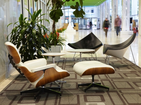 An office lobby outfitted with Eames and Nelson lounge seating.