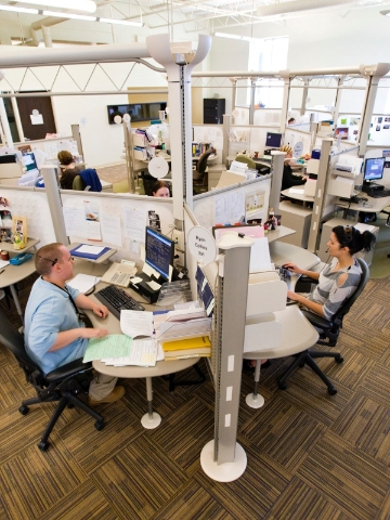 Call center employees work from within cubicles featuring an organic layout and lowered walls.