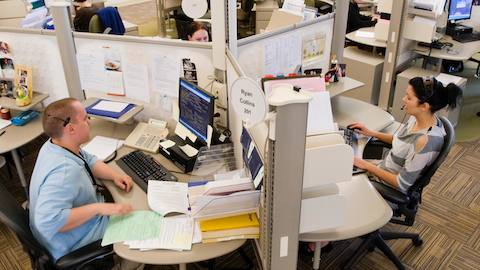 Employees sit within their respective cubicles while working at a call center.