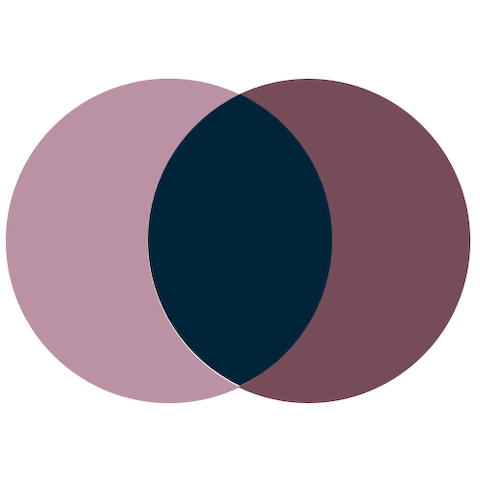 Two overlapping circles in maroon and light purple.