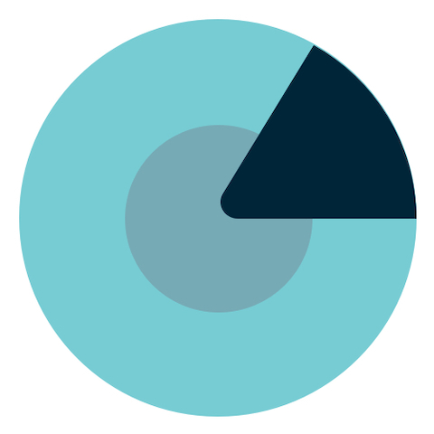 A blue circle with a black triangle inside.