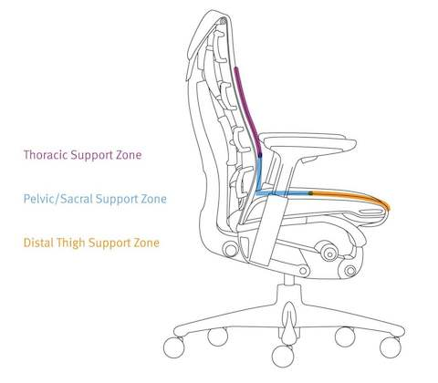 The three main zones supported by the Embody Chair.