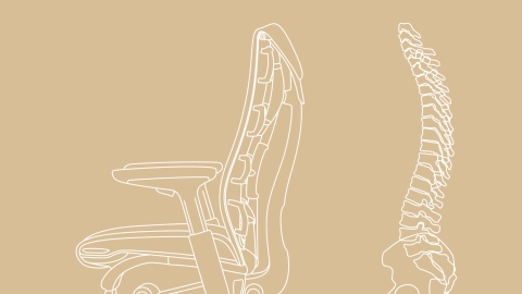 An illustration shows the curve of the spine in relation to the design of the Embody Chair.