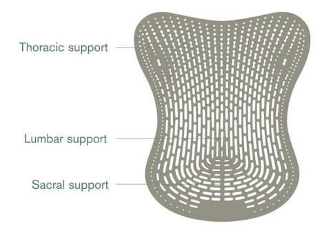 A diagram displaying how the Mirra chair supports three different back areas.