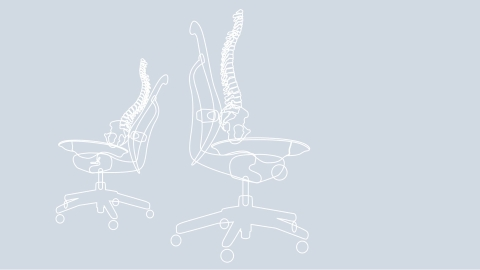 A graphic rendering of how the spine sits while in a Mirra chair.