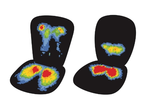 Thermal images revealing two different sets of pressure areas in a chair.