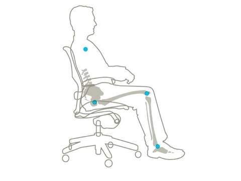 The Aeron Chair holds the same point of contact between the backrest and the pelvis as it reclines.