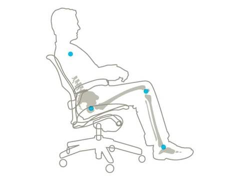 A detailed graphic displaying how the Aeron chair supports the body's natural linkages in all positions.