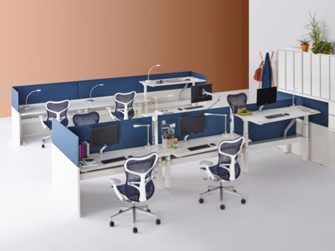 A benching work setting featuring blue Mirra 2 office chairs and the Renew Link system with height-adjustable desks.