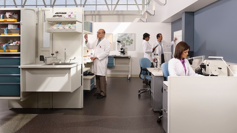 Four technicians work in a healthcare laboratory.