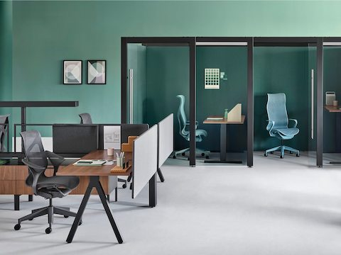 An administrative setting with two Overlay rooms containing height-adjustable desks and Cosm office chairs and a Canvas Vista workstation nearby.