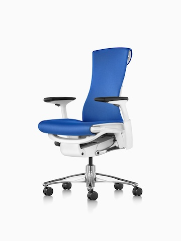 Blue Embody office chair.