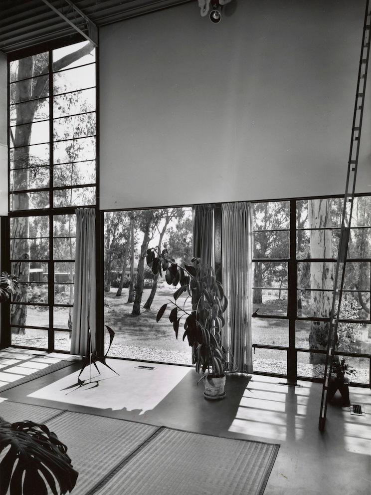 This black and white photo is a view of the living room without furniture, which has be removed so the Eames Foundation can do repairs. Plants and rugs are on the ground.