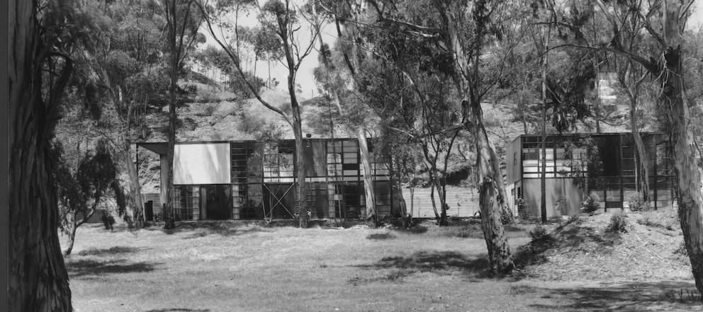 This black and white photo shows the front of the house and studio. Eucalyptus trees line the front of the house and meadow.