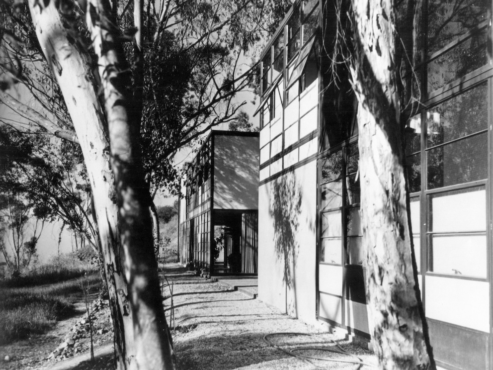 A black and white, archival shot of the Eames House and studio. Two Eucalyptus trees are in the foreground.